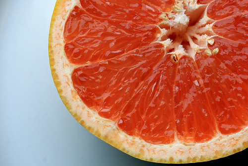 grapefruit photo
