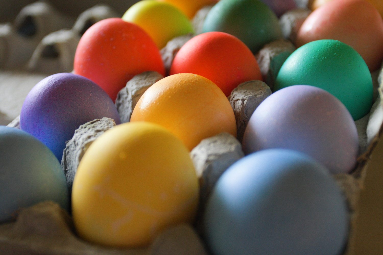 colored eggs photo