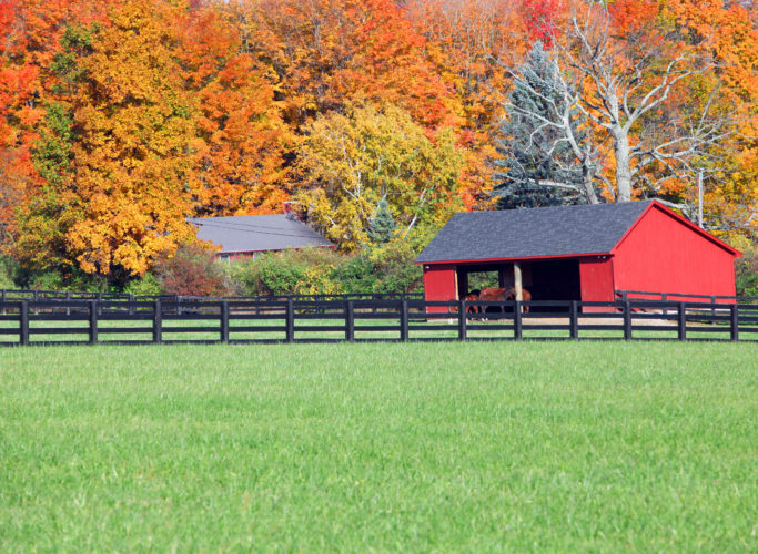 17 Beautiful Barns That Will Get You In The Mood For Fall