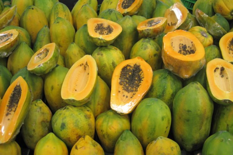 FDA warns papayas sold in Kentucky could be linked to salmonella outbreak