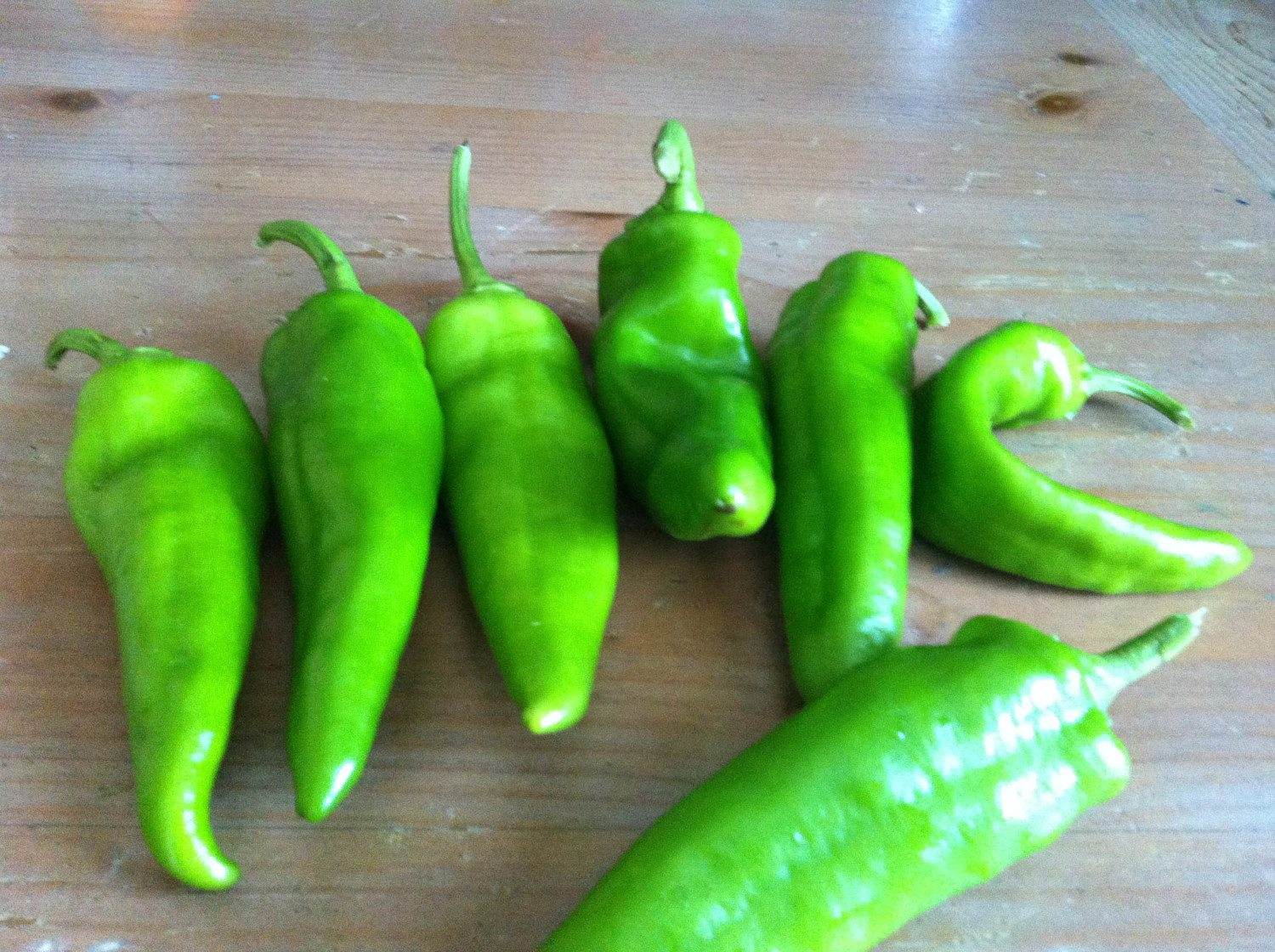green chiles photo