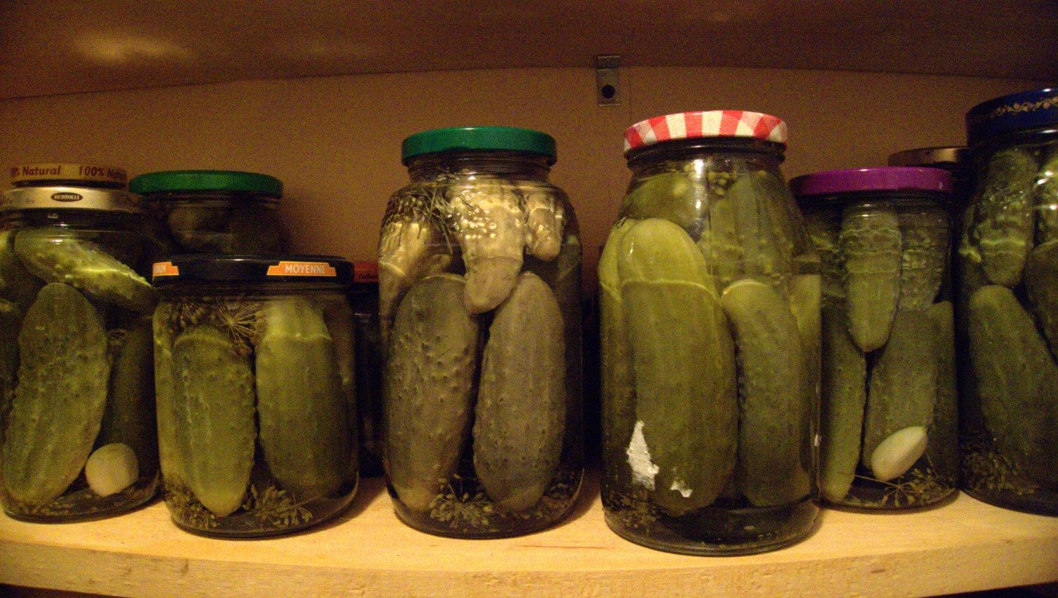 pickle photo