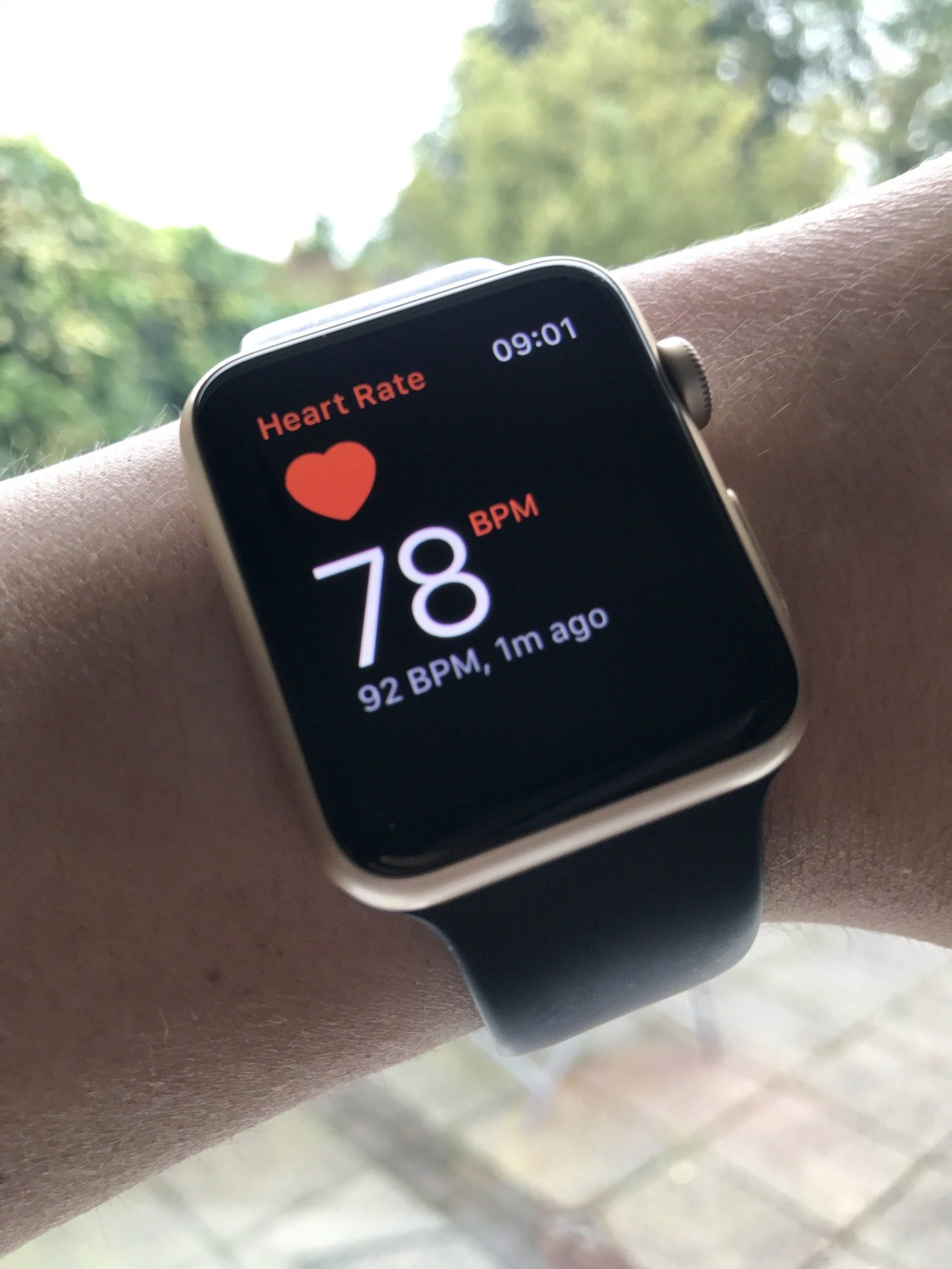 Apple watch heart rate photo