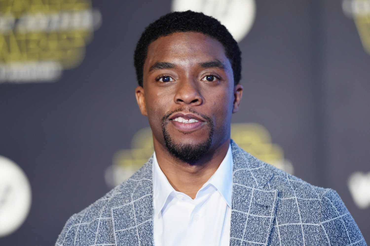 chadwick boseman 2015 horizontal photo