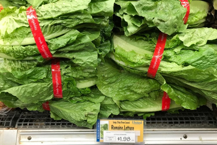 CDC Warns Americans Against Eating Romaine Lettuce After E Coli Outbreak