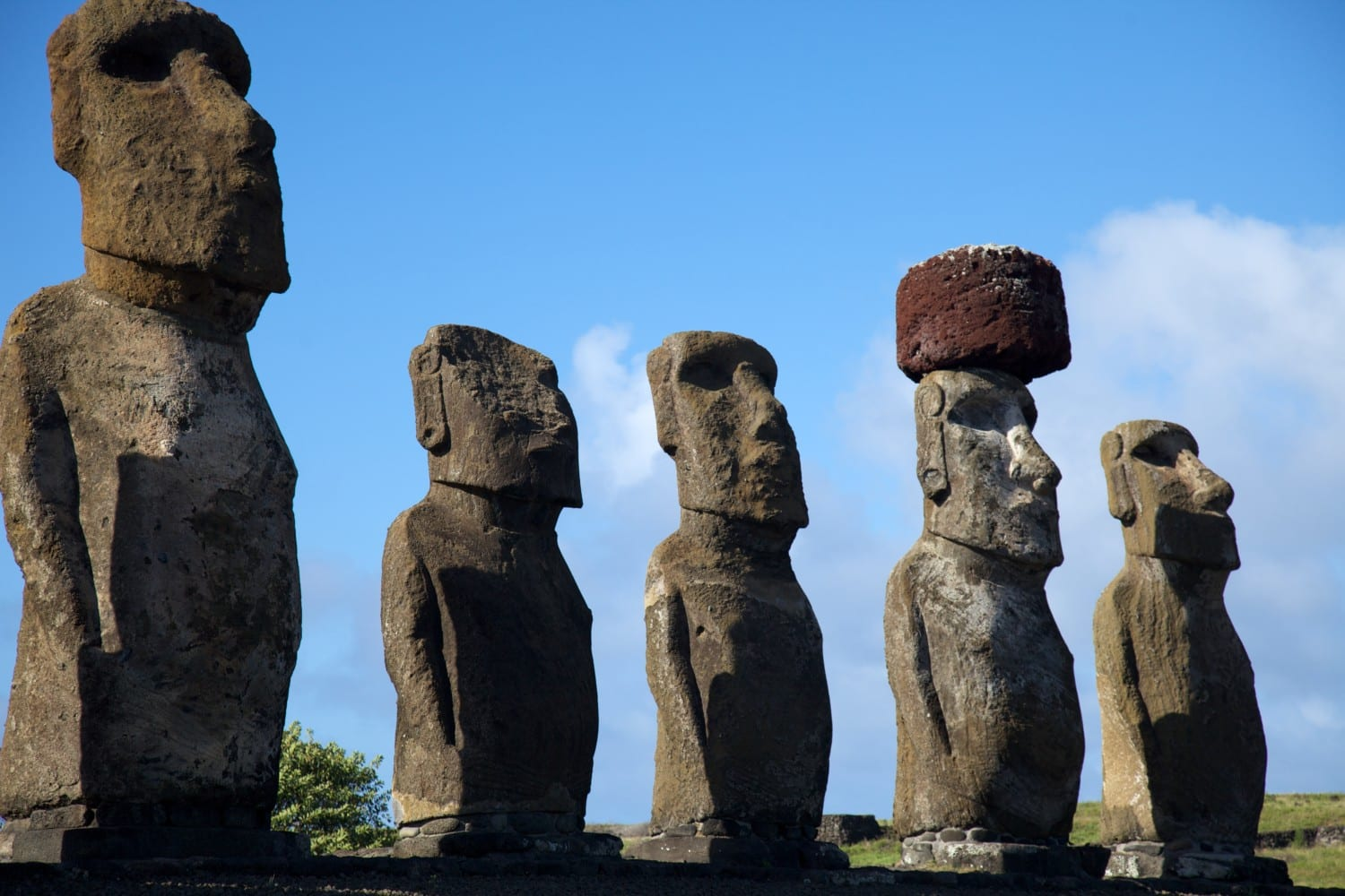 easter island statue photo