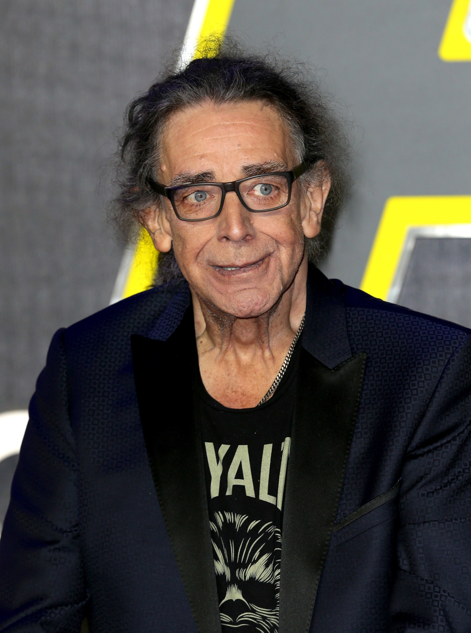 peter mayhew photo