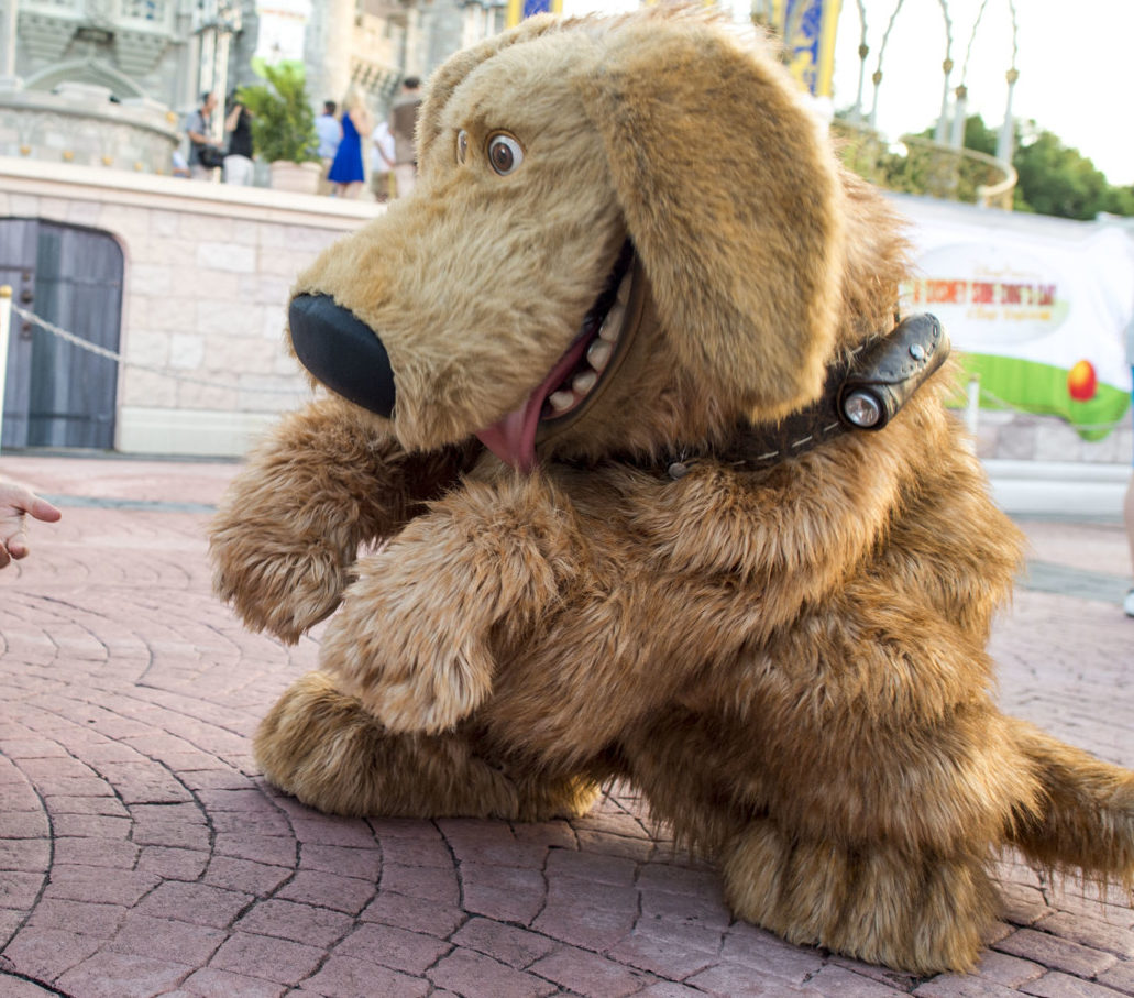 disney pixar up dug photo